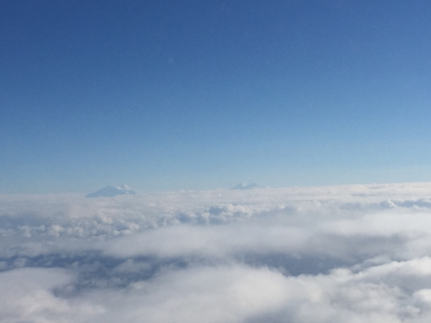 Denali and Mt Foraker peeking above the clouds at us, flying at 8,000 feet.